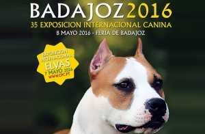 http://oferplan-imagenes.hoy.es/sized/images/Portada_canina_1-300x196.jpg